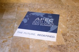 APEC 2011 Summit Floor Graphic