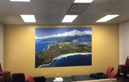Forest City (Synergy) Office Mural 1•