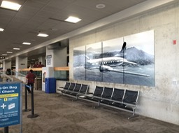 Hawaiian Airlines Terminal Display4•