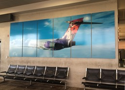 Hawaiian Airlines Terminal Display8•