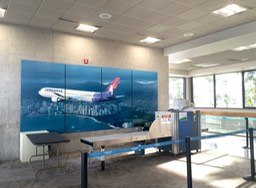 Hawaiian Airlines Terminal Display1•