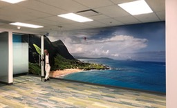 Sprint Mural Makapu CS-2•